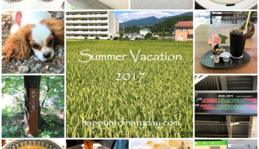 SUMMER VACATION 2017!
