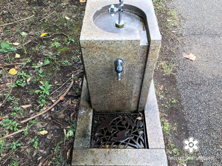 鳥類園・水飲み場