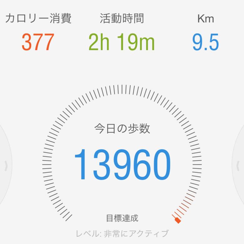 8日の歩数・13960歩