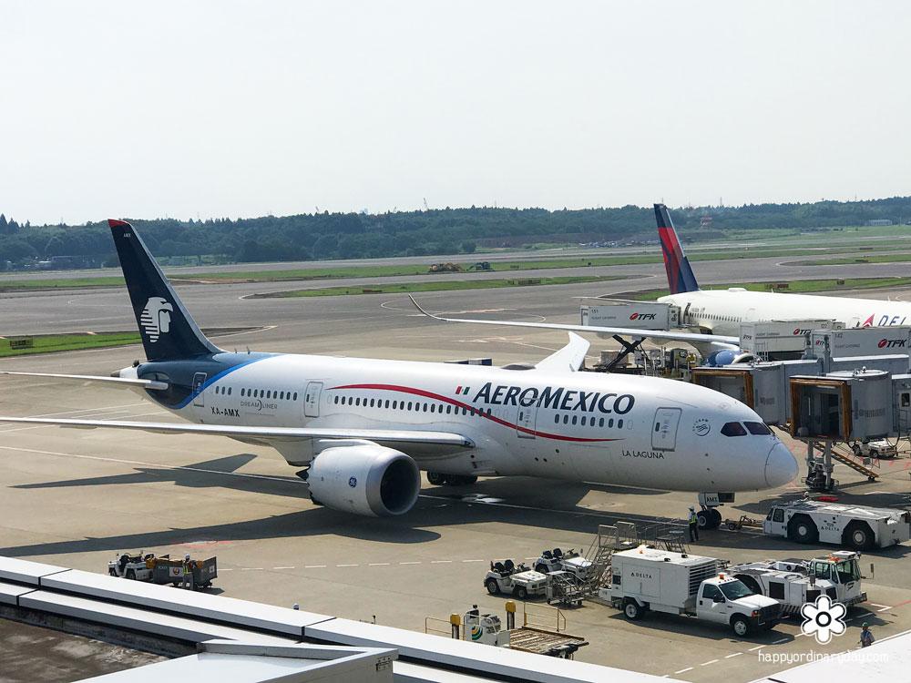 アエロメヒコ航空機 成田空港第1ターミナル展望デッキから